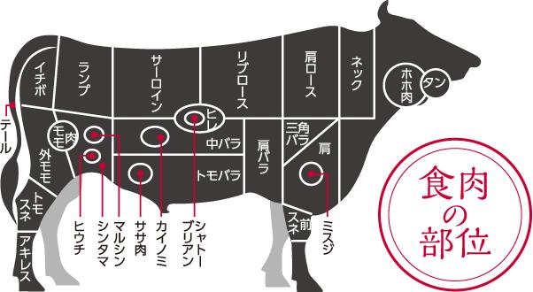 食肉の部位