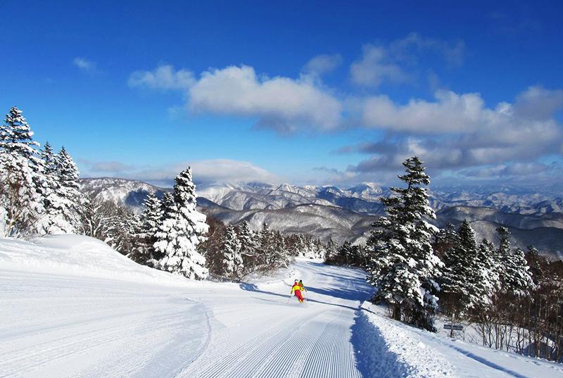 スキー場に関するグループインタビュー参加者募集