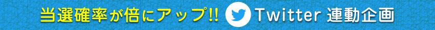 当選確率が倍にアップ!!Twitter連動企画