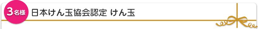 【3名様】日本けん玉協会認定 けん玉