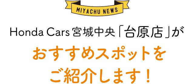[MIYACHU NEWS]Honda Cars 宮城中央「台原店」が おすすめスポットをご紹介します!