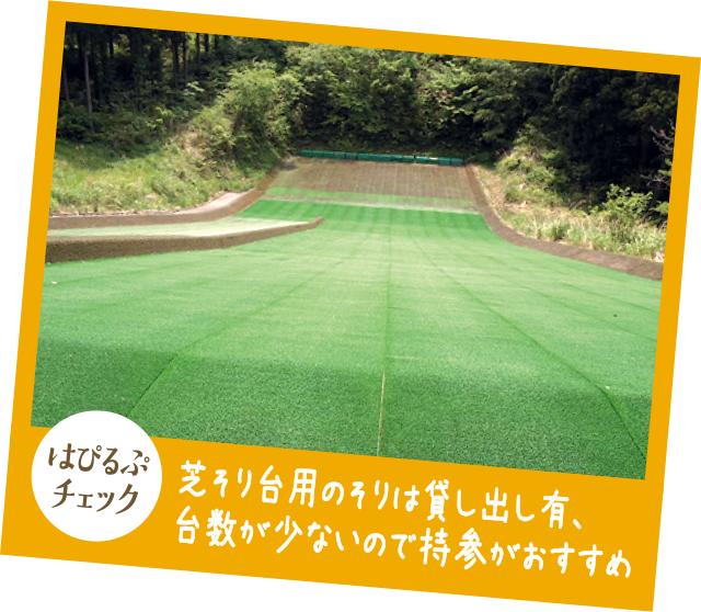 【はぴるぷチェック】芝そり台用のそりは貸し出し有、台数が少ないので持参がおすすめ