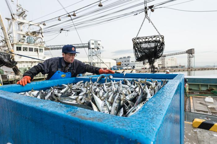 漁業イメージ