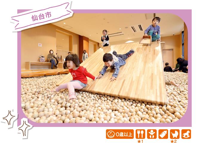 [仙台市]木の室内創造あそび場 感性の森