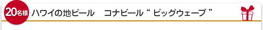 """【20名様】ハワイの地ビール コナビール""""ビッグウェーブ"""""""