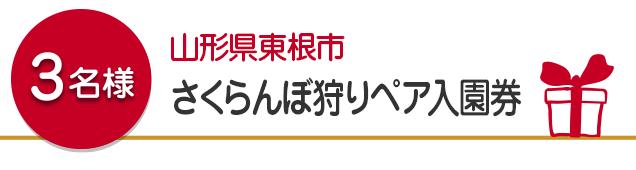 【3名様】山形県東根市 さくらんぼ狩りペア入園券