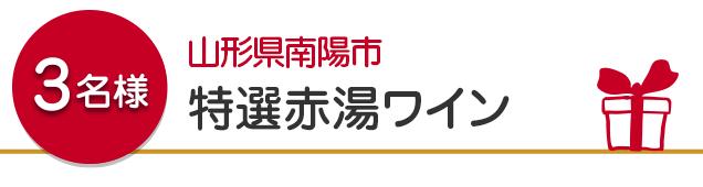 【3名様】山形県南陽市 特選赤湯ワイン