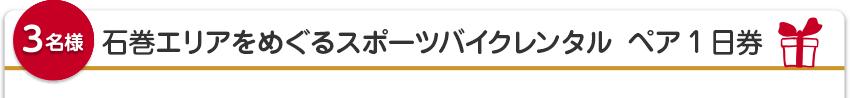 【3名様】石巻エリアをめぐるスポーツバイクレンタル ペア1日券
