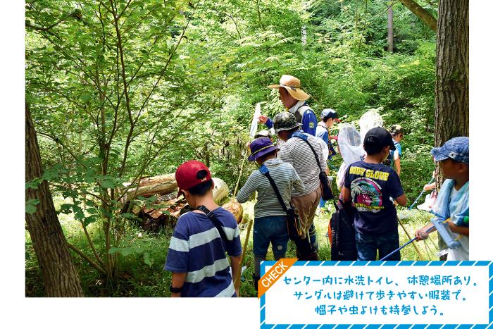 【太白山自然観察の森】[CHECK]センター内に水洗トイレ、休憩場所あり。サンダルは避けて歩きやすい服装で。帽子や虫よけも持参しよう。
