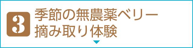 """[3]季節の無農薬ベリー摘み取り体験"""""""""""