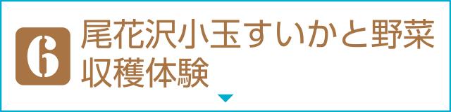 [6]尾花沢小玉すいかと野菜収穫体験