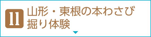 [11]山形・東根の本わさび掘り体験