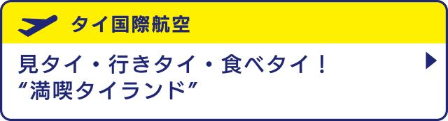 """[タイ国際航空]見タイ・行きタイ・食べタイ!""""満喫タイランド"""""""