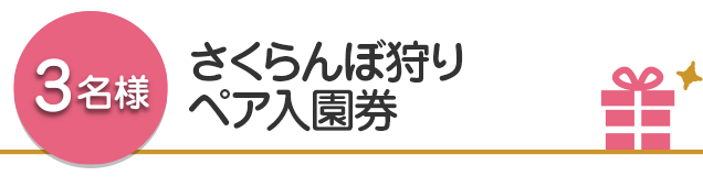 【3名様】さくらんぼ狩りペア入園券