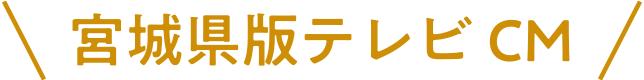 宮城県版テレビCM