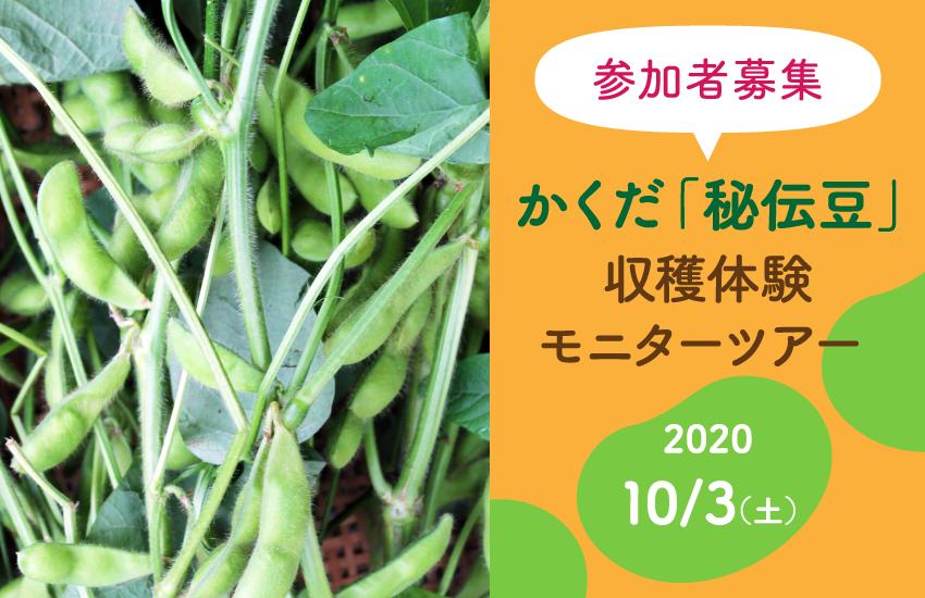 かくだ「秘伝豆」収穫体験 モニターツアー