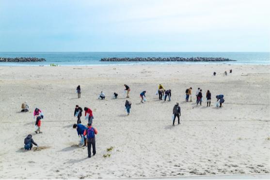 海でのごみ拾い活動イメージ