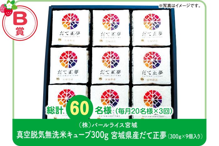 【B賞】真空脱気無洗米キューブ300g 宮城県産だて正夢(300g×9個入り)
