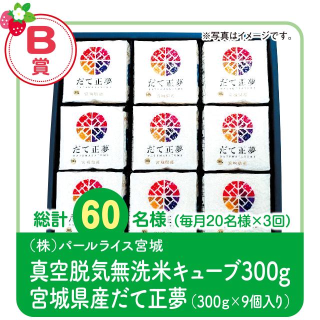 【B賞】賞真空脱気無洗米キューブ300g 宮城県産だて正夢(300g×9個入り)