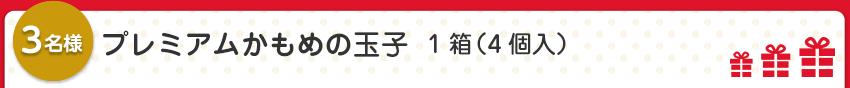 【5名様】プレミアムかもめの玉子  1箱(4個入)