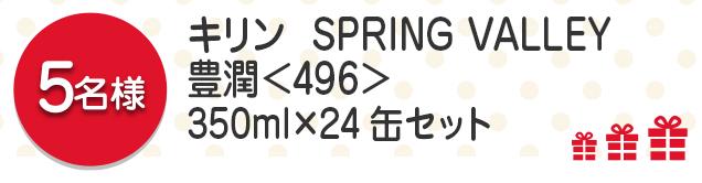 【5名様】キリン SPRING VALLEY 豊潤<496>350ml×24缶セット