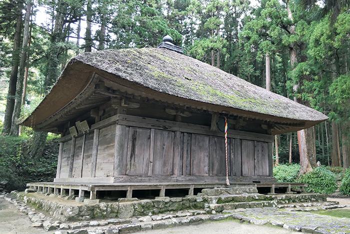 角田でねぎ収穫体験と歴史探訪ツアー