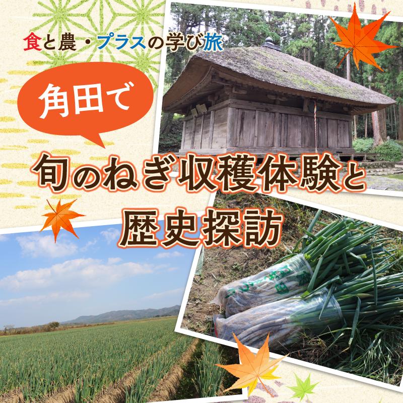 かくだ・ねぎ収穫体験モニターツアー