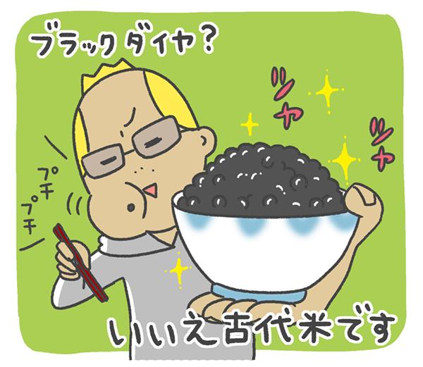 ブラックダイヤ?いいえ古代米です